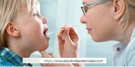 ¿Qué es una prueba de paternidad por ADN y cómo funciona?